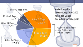 (c) DAK Gesundheitsreport 2004